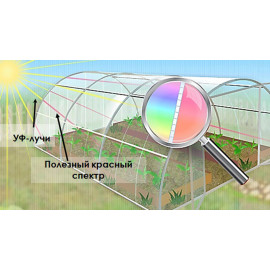 Поликарбонат сот. 4мм прозрачный -Премиум 2,1х12м
