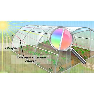 Поликарбонат сот. 4мм. прозрачный Стандарт 2,1х6м